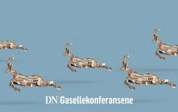 Gaselle-iDN